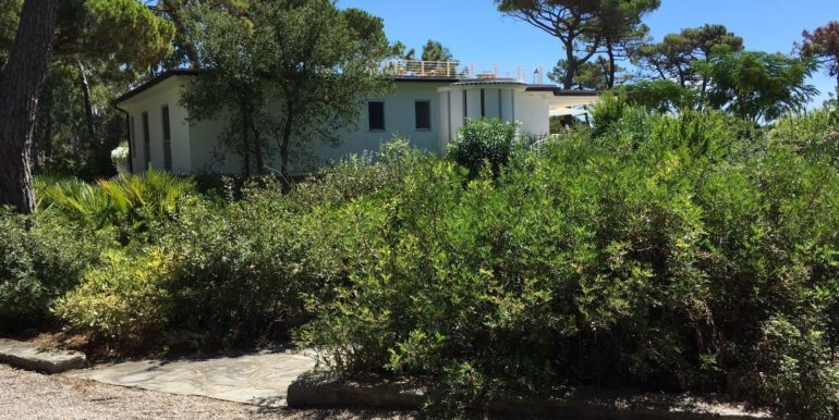 villa pineta roccamare toscana vendita concetta relli luxury real estate 02