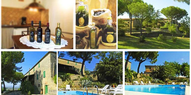 vendita agriturismo poggio oliveto matremma toscana - concetta relli luxury real estate 11