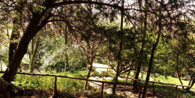 villa Montegalda 06